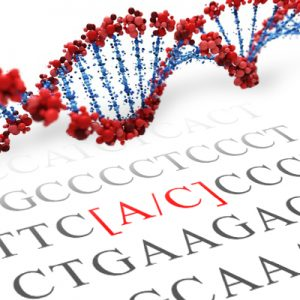 DRD2 SNP Genotyping