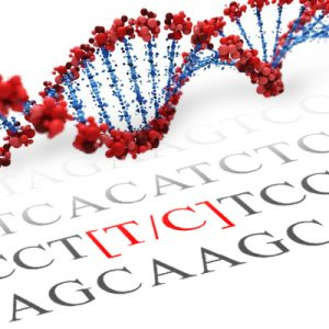 NR3C1 SNP Genotyping