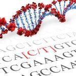 BDNF SNP Genotyping