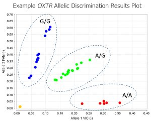 Example DNA OXTR Aleic Discrimination Results
